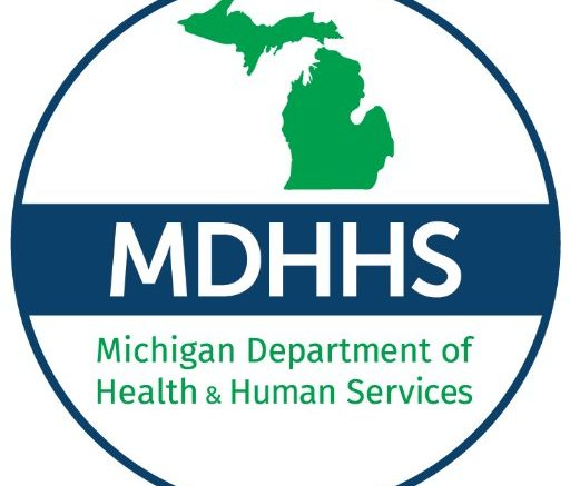 Michigan Department of Health and Human Services Logo and Link